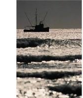 2010年度夏季環境リスク公開セミナー(第4回)