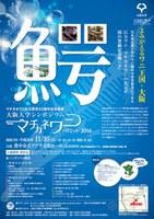 マチカネワニ化石発見50周年記念事業 大阪大学シンポジウム「マチカネワニ・サミット 2014」(2014年11月16日(日)開催)